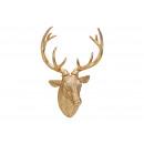 Deer head to hang poly gold (B / H / D) 30x47x