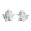 Testa di angelo in poly bianco 2- volte assortito