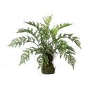 wholesale Artificial Flowers: Fern bush on mossballs 50x60cm made of plastic Gr