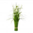 Cespuglio di erba con Cosmea 67cm H in plastica ve