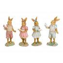 Coniglio poli poli 4 volte assortito , (B / H / D)