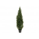 Cedar Outdoor UV in vaso di plastica verde (H) 1