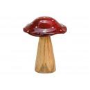 Fungo in legno di mango rosso, marrone (L / A / P)