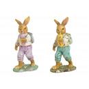 Poly coniglio multicolore 2- volte assortito , (L