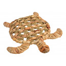Tartaruga giacinto d'acqua, metallo naturale (