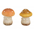 Clay mushroom brown 2- times assorted , (W / H / D
