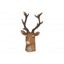 Testa di cervo in poly brown (L/A/P) 12x21x12cm