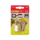 Padlock Solid 25mm with 6 keys