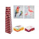 Boxing set cardboard box, birds 15 pieces