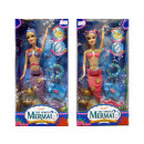 Mermaid with accessories, in visual box