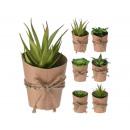 wholesale Artificial Flowers: Artificial plants in the pot Sokulenten about 7 x