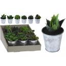 wholesale Artificial Flowers: Artificial plants in the metal pot Sokulenten