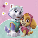 wholesale Party Items: Paw Patrol SKYE & EVEREST - 20 2-ply paper res