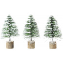 PINE TREES GREENWOOD 3 assorted (price per piece