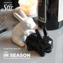 wholesale Houshold & Kitchen:Salt and pepper Rabbits