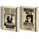 mayorista Mobiliario y accesorios oficina y comercio: Cuaderno de Harry Potter - Sirius Black Effect