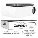 groothandel Computer & telecommunicatie: Speaker Inductie Smartphone Déclinais