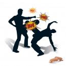 mayorista Otro:Zizis inflable Combat
