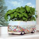 Grosshandel Pflanzen & Töpfe:Tray Combi WW Blumen