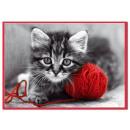grossiste Cartes de vœux: Passer les  couleurs de l'enveloppe