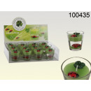 wholesale Garden & DIY store: Candle with ladybug and clover
