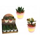 Grosshandel Pflanzen & Töpfe: LED-Licht Kaktus - 12 Stück
