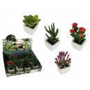 Grosshandel Pflanzen & Töpfe: Topf mit Blume Dekorative