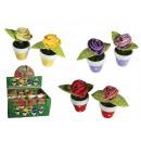 mayorista Plantas y macetas: material de Flor en un crisol
