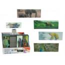 ingrosso Articoli da Regalo & Cartoleria: La scheda per il  libro con una foto del 3D