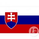 Slovakia flag 90x150 cm