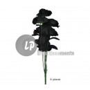 bouquet of roses BLACK 6pcs