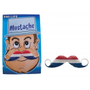 fake mustache holland France