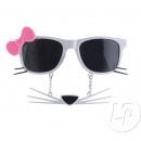 glasses kitten with white mustache