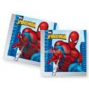 Großhandel Handtücher: Spiderman - Charge von 20 Papiertücher