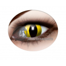 gelbe Schlange Kontaktlinsen