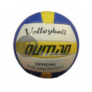 volleyball rubber size 5