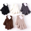 Winter sorted Stuffed Glove Ladies
