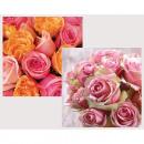 wholesale Plants & Pots: Premium Servietten 20er 33x33cm sorted,