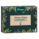 wholesale Wellness & Massage: Kneipp GP Saunaaufguss 3x20ml