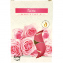 Tealights fragrance 6 Rose in Carton