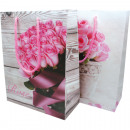 groothandel Stationery & Gifts: Gift bag  middelgrote 23x18x8cm