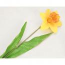 groothandel Kunstbloemen: Daffodil bloem  70x13cm met 2 bladeren