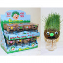 wholesale Plants & Pots: Grass head filled with grass seeds to pull yoursel