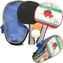 Table tennis bats Pro 2 & 2 balls in a bag