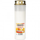 Grave light burner No. 7 with gold lid 25x7cm