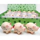 Glücksbringer Schwein Viel Glück  Polyresin 5x4cm