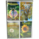 grossiste Cartes de vœux: cartes Communion  Card 17,5x11,5cm 8x assorti