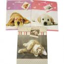 groothandel Overige tassen: Gift bag katten /  honden betekent 23x17x10cm