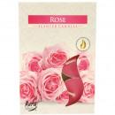 parfum Teelichte 6 Rose dans la boîte en carton