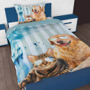 Cool Pets  Turquoise 140 x 200/220 Turquoise